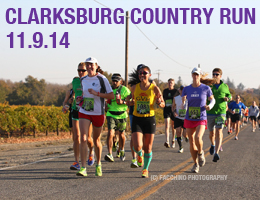 clarksburg-2014-slide