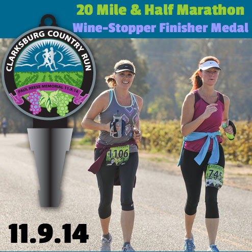 ccr-2014-medal-preview